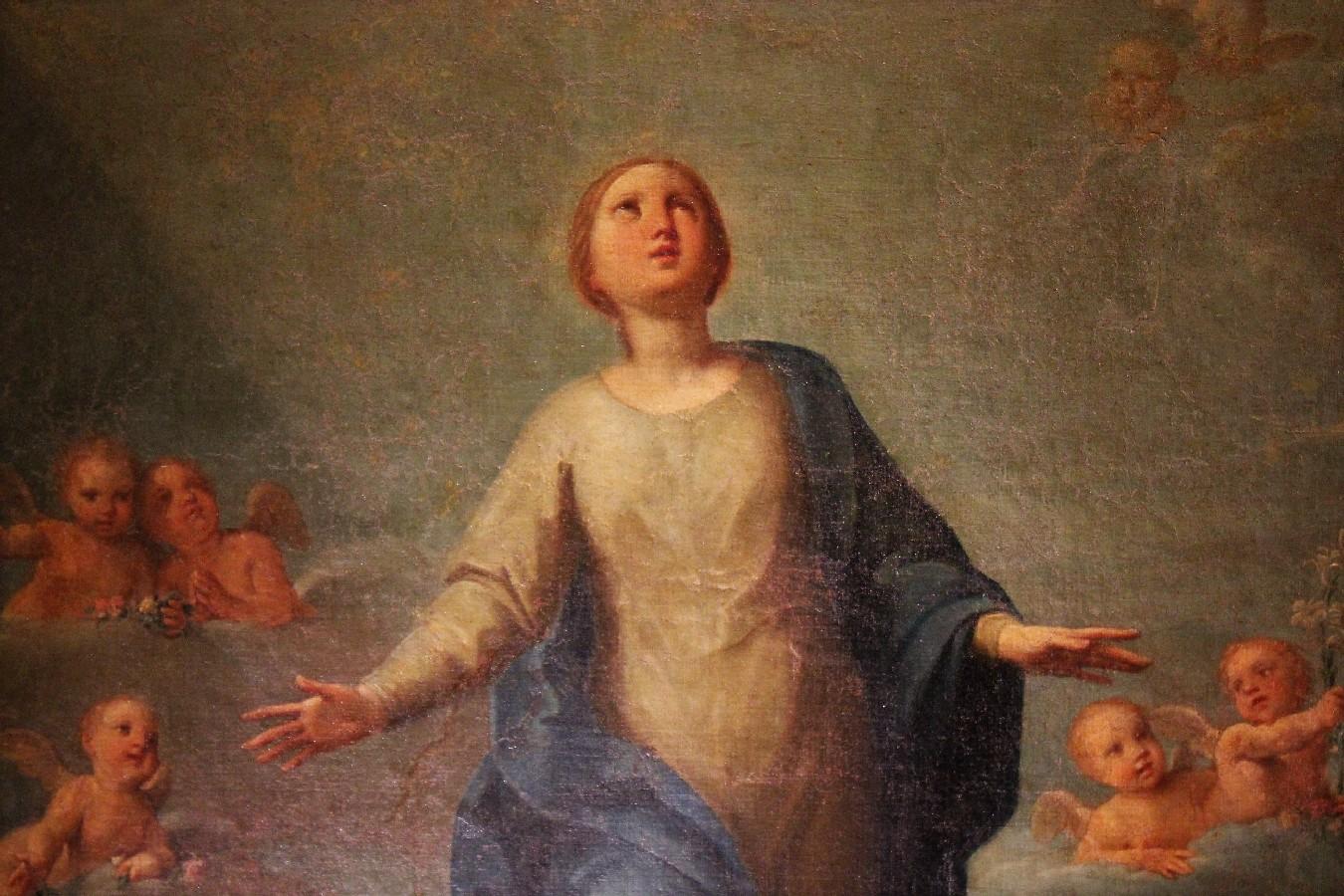 Read more about the article L'immacolata Concezione di Marcantonio Franceschini, un dipinto inedito da collezione bolognese